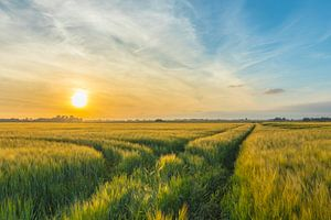Zonsondergang op 't Drentse land van Johan Mooibroek