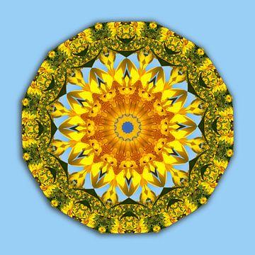 Sunflower, Floral mandala-style, Flower Mandala van Barbara Hilmer-Schroeer