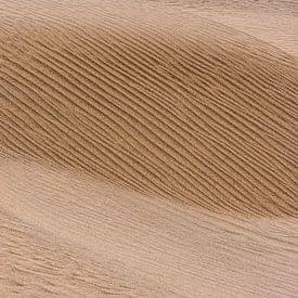Image abstraite d'une dune de sable dans le désert d'Iran. sur Photolovers reisfotografie