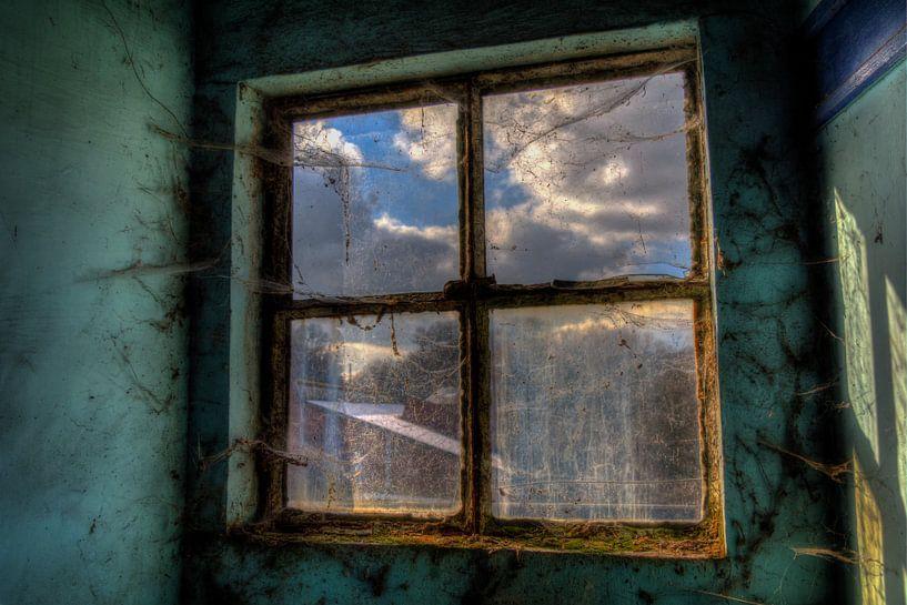 Window van Maikel Brands