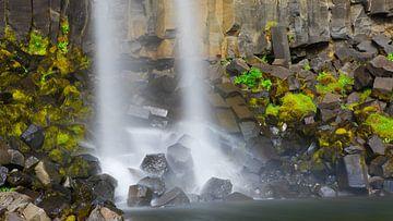 Svartifoss waterval in Skaftafell Nationaal Park, IJsland van Henk Meijer Photography