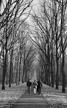 Zondagse wandeling van Ronald Kleine