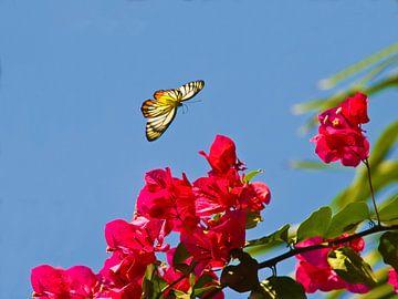 Glas in lood vlinder van kees luiten