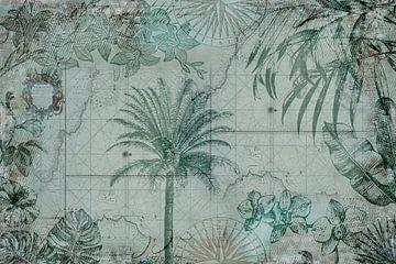 Nostalgische Tropen-Reise von Andrea Haase