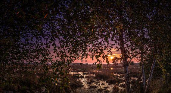 Zonsondergang op het Wierdense veld van Martijn van Steenbergen