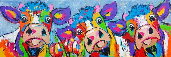 Drei Kühe blaugrau