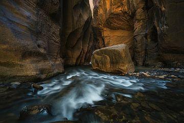 Een rots in beweging van Joris Pannemans - Loris Photography