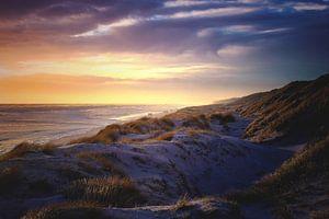 Spitsuur aan de Deense kust