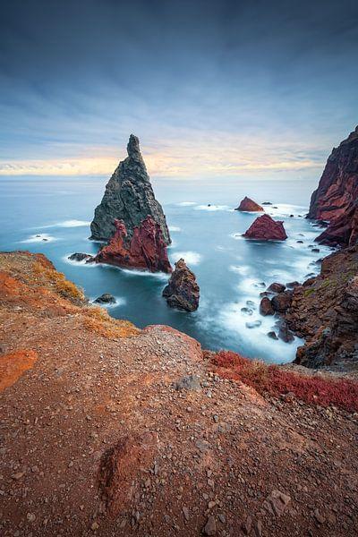 Bizarre rots naalden (Ponta de São Lourenço / Madeira) van Dirk Wiemer