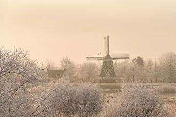 Zicht op een oude windmolen in de stad Kampen naast de rivier de IJssel in de winter van Sjoerd van der Wal