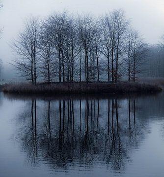 Reflectie van Anita van Gendt