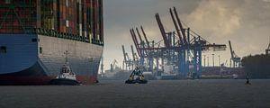 Großes Containerschiff läuft im Hamburger Hafen ein von Jonas Weinitschke