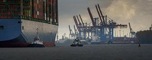 Großes Containerschiff läuft im Hamburger Hafen ein