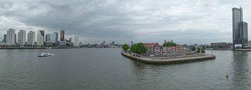 Rotterdam Panorama van Omri Raviv