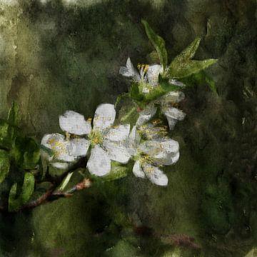 bluete von Yvonne Blokland