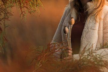 Herbstatmosphärenplatte mit getrockneten Mohnkapseln von Mayra Pama-Luiten