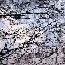 Reflectie in het water van Barbara Brolsma