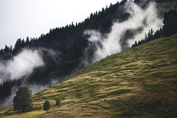 Alpiner Nebel 1 von Bart Rondeel
