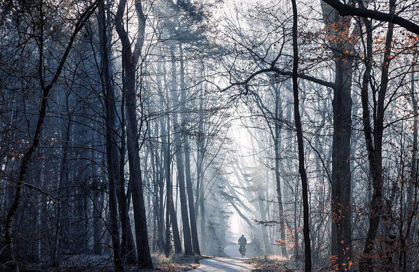 Een fietser van Anneke Hooijer