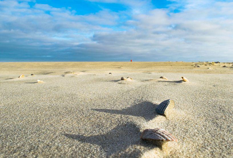 Leeg Strand Texel van Dick Hooijschuur