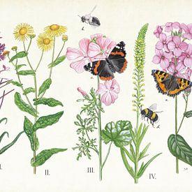 Planten en haar insecten van Jasper de Ruiter