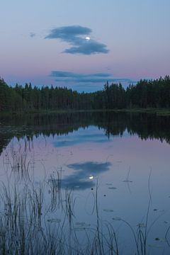 Zweeds meer van Douwe Schut
