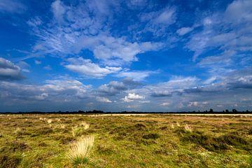 Heideveld onder wolkenlucht van