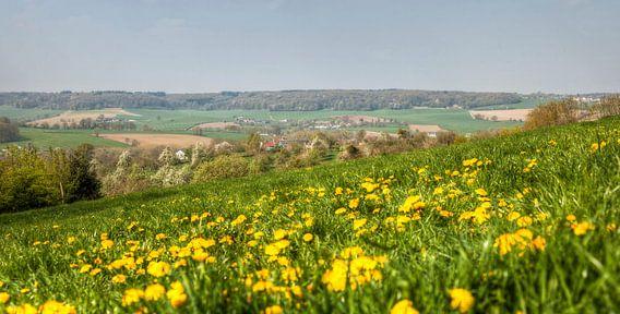 Bloesem in het Geuldal in Zuid-Limburg van John Kreukniet