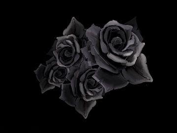 Grijze rozen van Blckwork ..