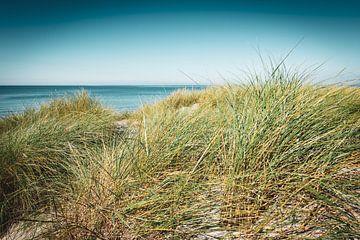 Sommer am Ostsee Strand von Martin Wasilewski