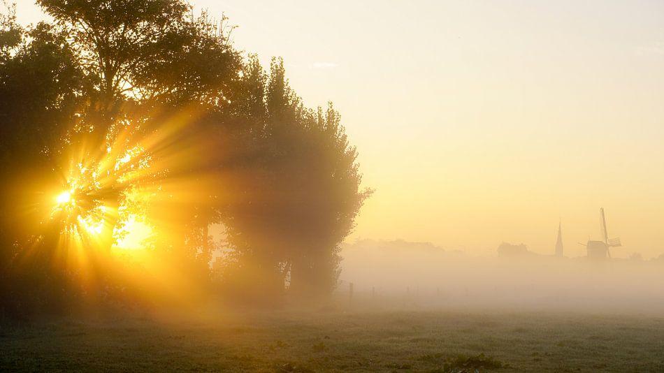 Mist in morgen van Dirk van Egmond