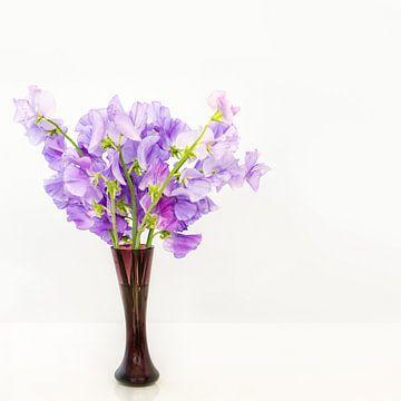 Vase mit Lathyrus von Kok and Kok