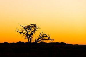 Zonsondergang von Nico van Velden