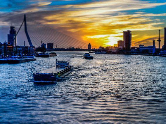 De Zwaan en de Maas
