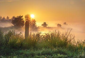 Nebel-Landschaftspolder von natascha verbij