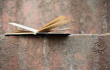Een geopend oud boek aan een muur van Ulrike Leone
