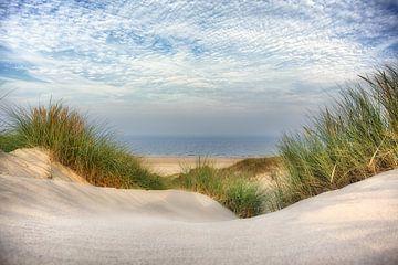 Doorkijkje door het helmgras naar de zee van Fotografie Egmond