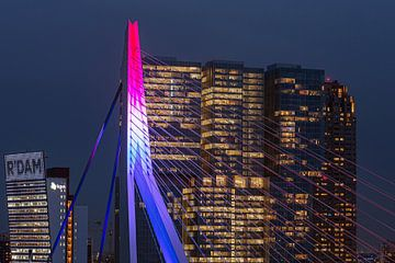 Gros plan sur le pont Erasmus de Rotterdam sur Leon van der Velden