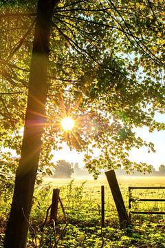 Sonnenaufgang_05 von Johan Honders