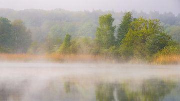 Relaxing lake scène