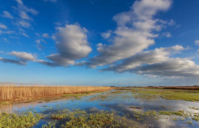 Wolkenpartij boven de Onlanden, Groningen van Koos de Wit