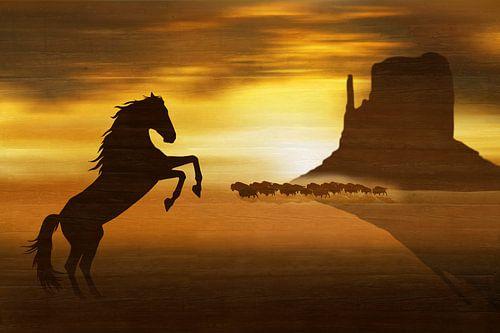 Der wilde Mustang von
