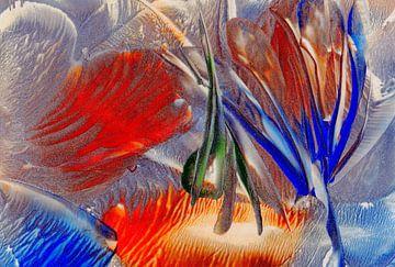 Achtsame Farben 29 von Terra- Creative