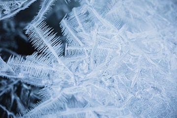 Detail van ijskristallen in bevroren rivier - Lyngen Alpen, Noorwegen van Martijn Smeets