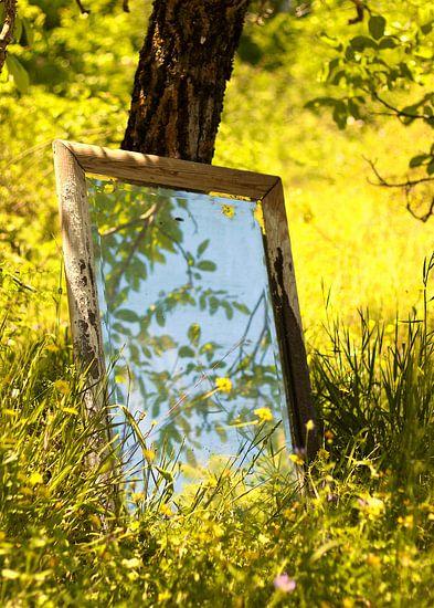 Lente reflecteert in de spiegel