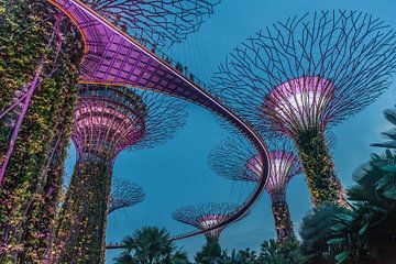 Singapour la nuit sur Paul de Roos