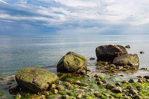 Stones on shore of the Baltic Sea van