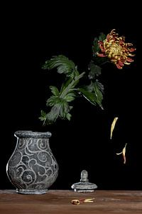 Stilleven van bloem in urn bolchrysant