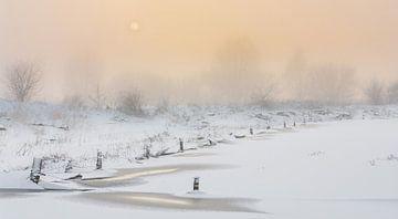 Freezing van Lex Scholten