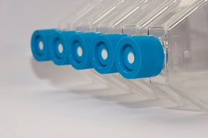 The science of tissue culture